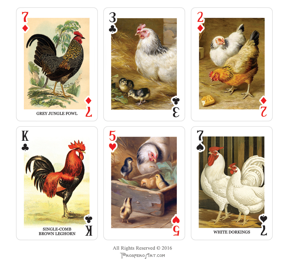 Chicken Playing Cards by Prospero Art